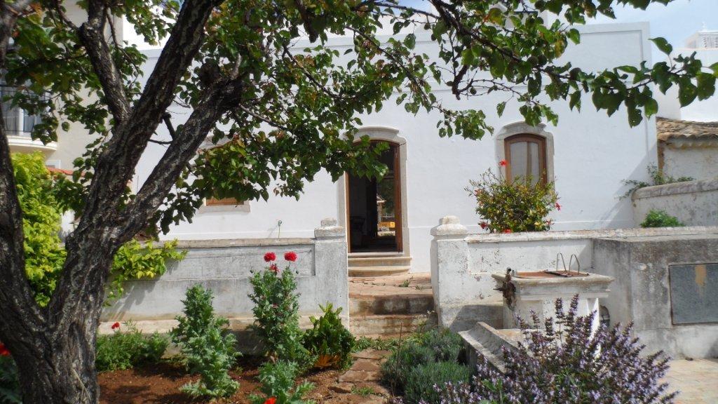Südseite des Blue House mit dem Garten...