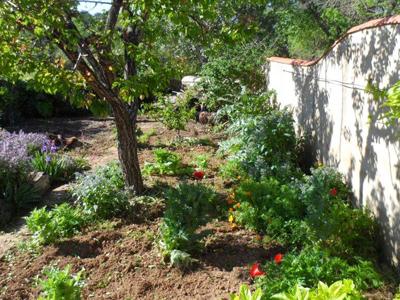 Der private Garten des Blue House